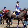 レース観戦アーカイブス(Vol.24 2004-05年 生観戦レース記録)