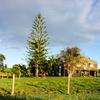 チルダーズ紀行(オーストラリア初めてのキャンプ)
