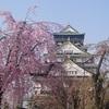 大阪市内の桜の名所 大阪城公園と大川沿いの桜を見に行ってみた