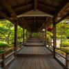 京都嵐山に行ったら大覚寺(旧嵯峨御所)がおすすめ!美しいのに人が少ない京都でおススメの観光スポット