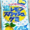 塩レモンスカッシュグミ