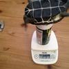 # 22 今日は身体測定の日です。