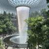 【シンガポール】3日目-2 チャンギ空港の新施設ジュエルはすごい!