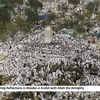 Hajj Reflections in Maidan e Arafat with Allah the Almighty