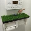 我が家緑化計画 ~トイレに緑を!~