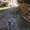 ヤバイ!!メイス島の民家の路地で取り返しがつかない事態に!!(ギリシャ・トルコ