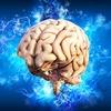 「クリックアウト」 ~絶対に理解したい左脳と右脳の役割と、絶対にやってはいけないヒーリング~