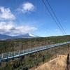 箱根旅行の裏ルート!三島スカイウォークで富士山の絶景でとともに芦ノ湖へ!