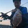 【番外編】七里御浜で狙うショアレッドの釣り方【真鯛】