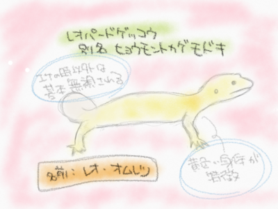 【東京ぐらし】Part4 大学生の長い長い夏休み