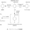 アセトアミノフェン(カロナール)の作用機序・肝障害と薬物動態