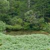 目玉沼(山形県山形)
