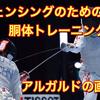 OPAフェンシングトレーニング①〜アルガルドの画定&ファント〜