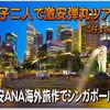 【前編】親子♂2人で激安シンガポール弾丸ツアー!(+兼ちょい修行) ANA海外旅作の過酷なスケジュールに挑戦!