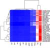ヒートマップ図の色指定