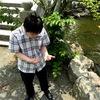 宗像大社で鯉のエサやりをしようとしたら、池の水が!