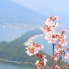 【海の京都】日本三景天橋立と周辺スポットへ行ってきたので「写真」と「見所」を紹介する!
