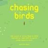 【chasing birds】公園の平和を守る