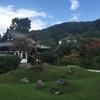 初めて浴衣を来て京都を観光したお話