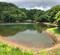 金山溜池(新潟県佐渡)