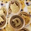 モナコインの本家であるDOGE COIN 【ドージコイン】ウォレットアプリに入れたよ。