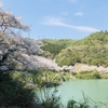 堀河ダムへお花見ツーリング 20200404