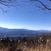 【陣馬山】富士山がくっきり見えた栃谷尾根コース