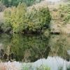恋地上池(広島県大崎上島)