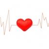 人工呼吸器や心電図が理解できるとリハの安全性は高まります