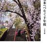 【試し読み】未来へつなぐ千年桜 (42ページ)