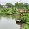 南山公園の大池(千葉県白井)