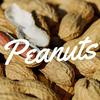 ピーナッツの皮は痴呆症予防に一役かってくれる素敵な効能をもっていた!!!