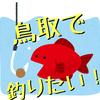 分かり易く解説!鳥取県おすすめ釣り場、釣り魚情報【漁港編】