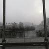 11月19日(月)雪が朝から降っていました