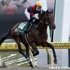 タコイチの【今週の地方競馬】JDD!