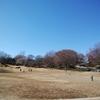 埼京線十条手前で見えるあの公園、清水坂公園に行ってきました