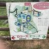 【オススメ】高知市のランニングコースその1~芝生コース~