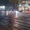 東京は大雨でした