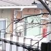シジュウガラ 散歩 絵ぞうきん→ひな祭りバージョン