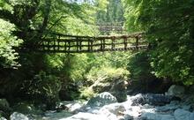 私のとっておきの徳島!観光、グルメ、お土産まで阿波弁と英語で教えます!