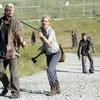 ウォーキング・デッド/シーズン3【第11話】あらすじと感想(ネタバレあり)Walking Dead