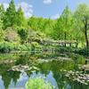モネの庭を堪能するなら休園前に🌱
