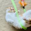 馴染みのおもちゃとは、省エネで遊ぶ愛猫