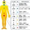 坐骨神経痛の治療7(埼玉県川口市蕨のゴッドハンド整体、川口しば整骨院)