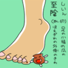 膀胱経(BL)67   至陰(しいん)