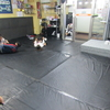 月曜日祝日フルタイムキッズ柔術クラス、一般柔術クラス。