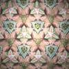 凸多角形の三角形分割問題(4)