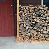 薪ストーブ原生代27 十二月、ボケ薪を焚き始めた