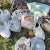 ゴミ拾いボランティア活動を福岡県八女市ではじめました。