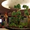 KUALA LUMPUR:Nilai Springs Resort Hotel